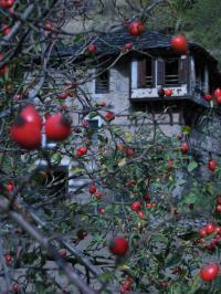 Маноловата къща