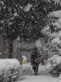 Дори снимките са зимни